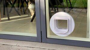 Glas med hul til kattelem. Hul skåret i glas på mål. njpglas.dk